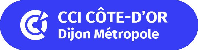 CCI21-cartouchebleu